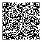 qr_code_without_logo-300x300